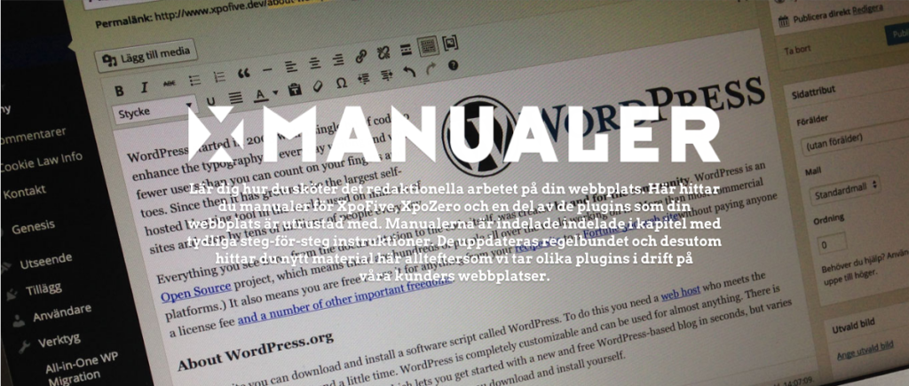 wordpress-manual-online